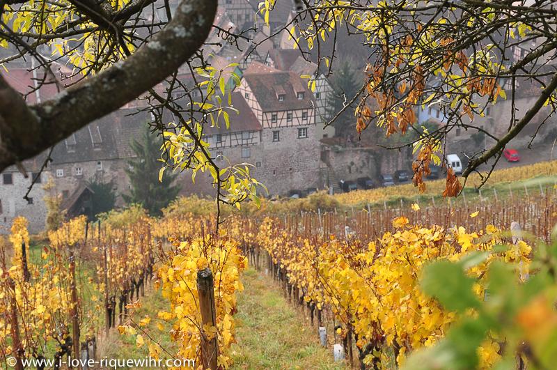 riquewihr route du vin